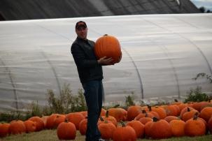 Pumpkins, too!